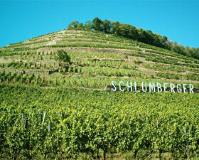 Grand Cru Kitterle Domaines Schlumberger Alsace