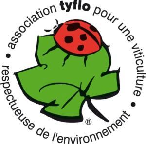 Logo Tyflo