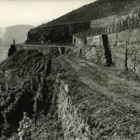 Histoire murs Domaines Schlumberger Alsace