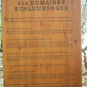 Vigne musee Domaines Schlumberger Alsace