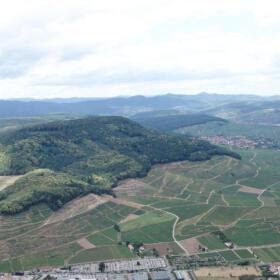 Vigne vue ensemble Domaines Schlumberger Alsace