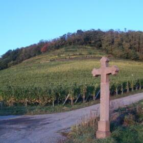 Vigne Croix Domaines Schlumberger Alsace