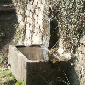 Vigne Fontaine Domaines Schlumberger Alsace