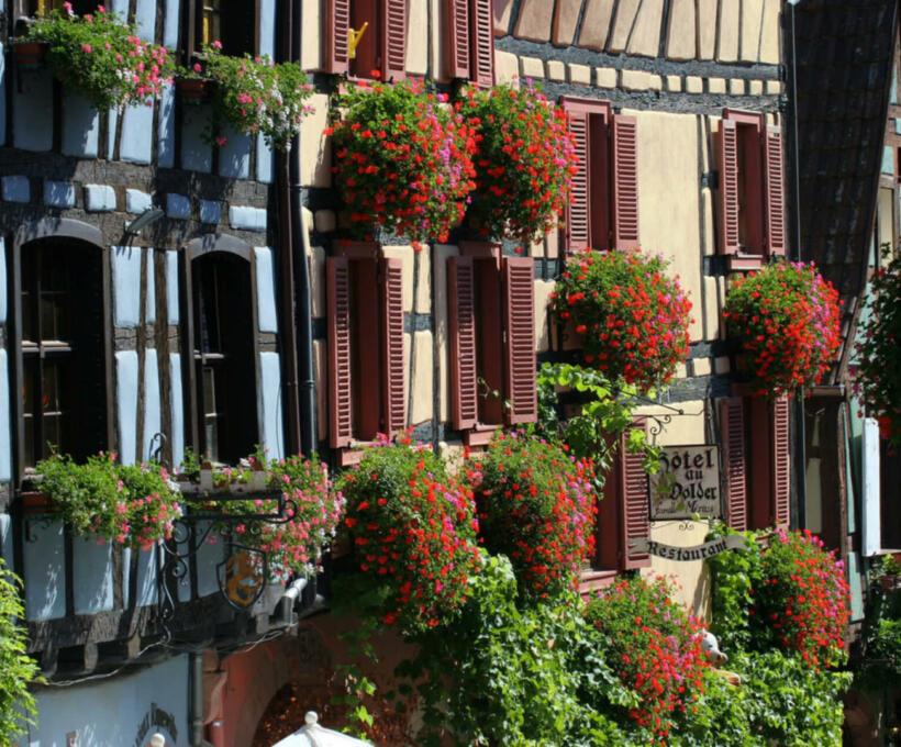 Histoire Hecht Schlumberger vin Alsace